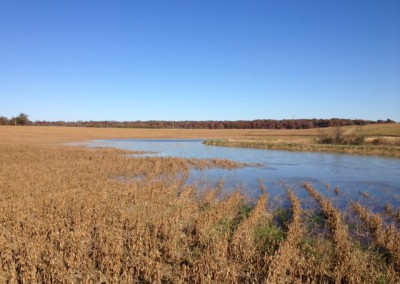 Turkey isle waterfowl impoundments 4